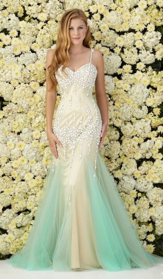 2015 prom dress ready to ship from Los Angeles!