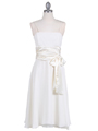 Ivory Tea Length Dress - Front Image