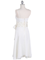 Ivory Tea Length Dress - Back Image