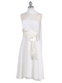 Ivory Tea Length Dress