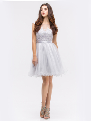 30-3622 Sleeveless Fit and Flare Cocktail Dress, Silver
