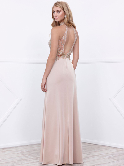 80-8319 Sleeveless Long Prom Dress with Open-Back - Cappuccino, Back View Medium