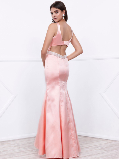 80-8320 Sleeveless Long Prom Dress with Cutout Back - Rose, Alt View Medium
