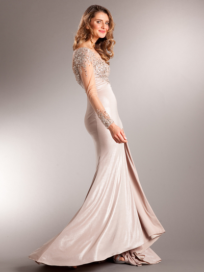 AC707 Long Chiffon Sleeves Crystal Evening Gown - Champagne, Back View Medium