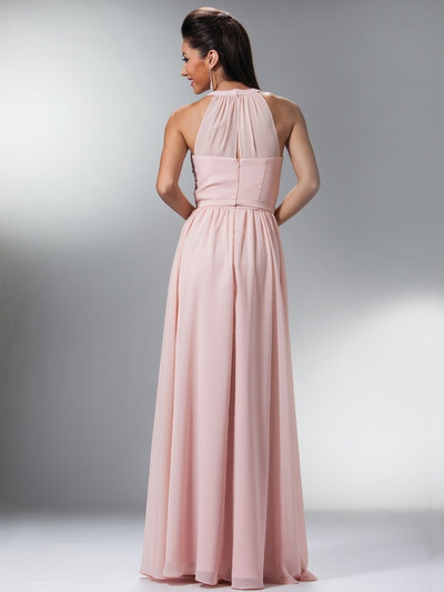 C1469 Illusion Evening Dress - Blush, Back View Medium