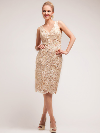 C1932 Lace Embroidery Knee Length Dress - Champagne, Front View Medium