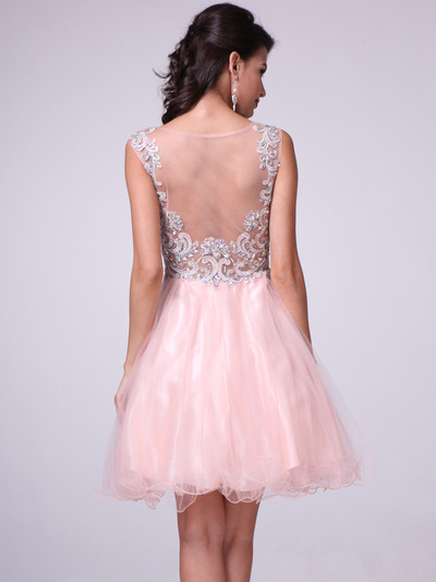 b55ad3109a ... C27 Embellished Tulle Fit   Flare Homecoming Dress - Peach