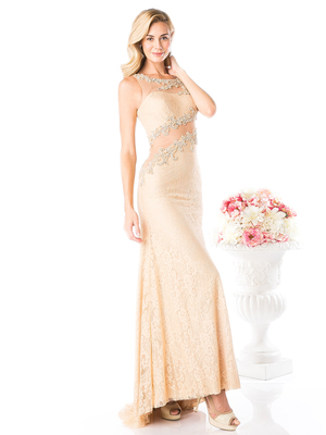 CD-8909 Lace Sheer Evening Dress with Illusion Neck, Gold