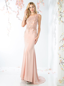 CD-8911 Illusion Neck A-line Evening Dress with Train, Blush