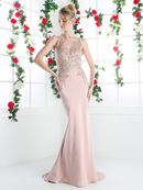 CD-8912 Long Beaded Evening Dress with Illusion Bodice, Dustyrose