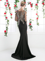 CD-8916 Illusion Embellished Long Evening Dress  - Black, Back View Thumbnail