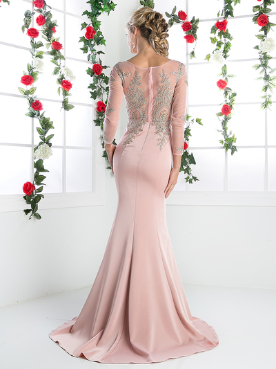 CD-8916 Illusion Embellished Long Evening Dress  - Blush, Back View Medium