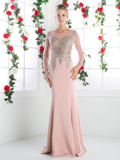 CD-8916 Illusion Embellished Long Evening Dress  - Blush, Front View Medium