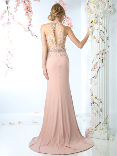 CD-CD491 Halter Applique Long Prom Dress with Train - Blush, Back View Medium
