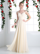 CD-CJ215 Pleated V-neck Evening Dress with Sheer Sleeve, Champagne