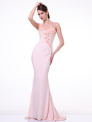 CD-JC4053 Illusion Rosette Evening Dress with Train, Peach