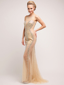 Gold Sheer Illusion Prom Evening Dress