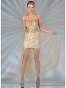 Dazzling Sheer Corset Evening Dress