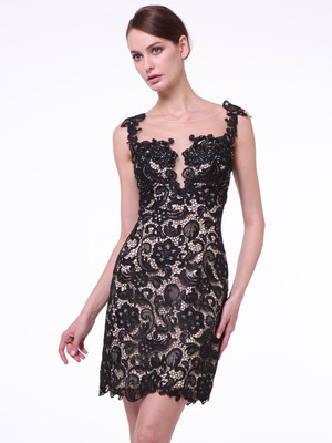 JC925 Illusion Yoke Lace Sleeveless Sheath Dress      , Black Nude