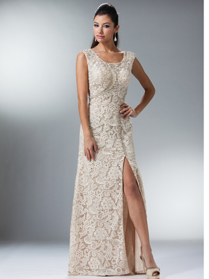 XC001 Champagne Vintage Lace Fitted Evening Dress, Champagne