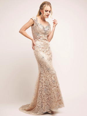 XC002 Lace Formal Dress with Train, Champagne